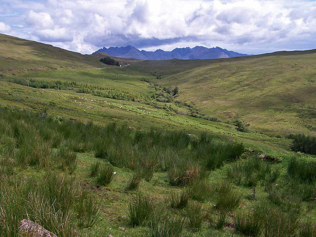 Valley of the Meadale Burn