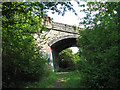 TL4960 : Bridge over the Cambridge-Mildenhall railway by John Sutton