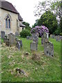 TQ7718 : Churchyard, St John the Baptist's Church by Miss Steel