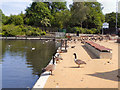 SJ9599 : Stamford Park Lake by David Dixon