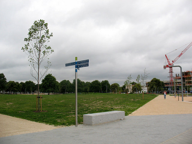 Fordham Park: open space