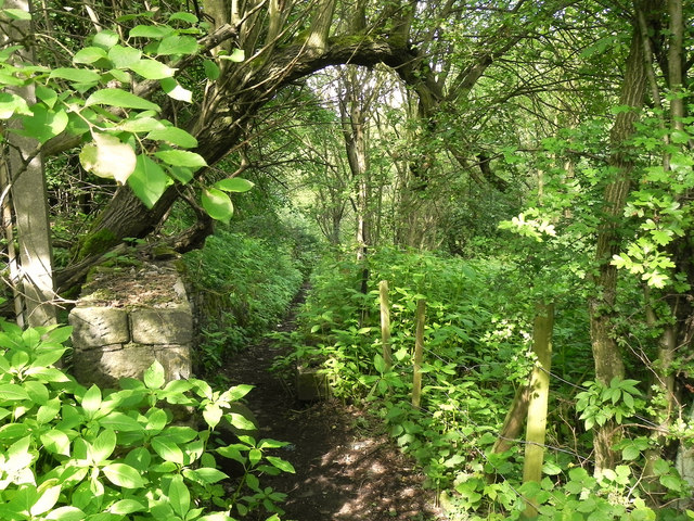 Footpath off Printworks Road