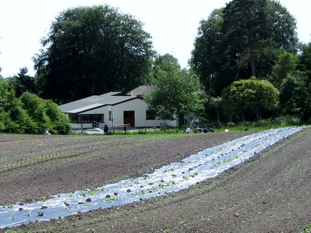 Market gardening at the Camphill Community Mourne Grange