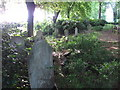 TQ2782 : Gravestones in St. John's Wood Church grounds by Mike Quinn