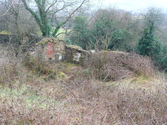 Ruined cottages off Green Lane, Farnley