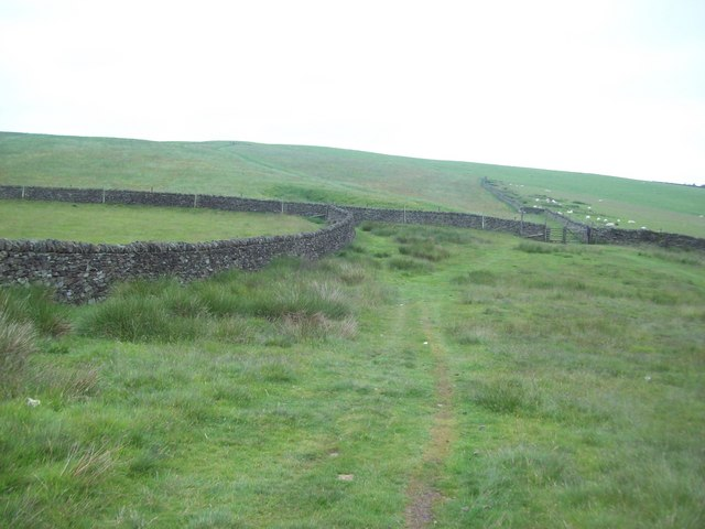 Footpath near Bridge-end Pasture