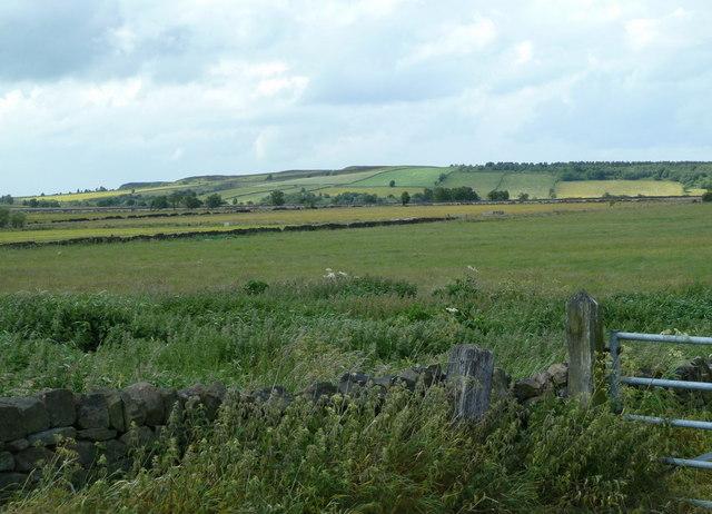 Farming scene, upland plateau