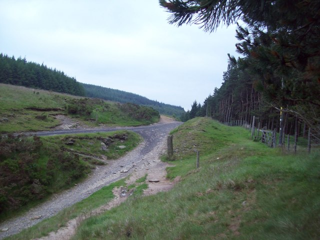 Crossing Point at Woodcock Coppice