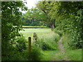 SK4379 : Footpath to Eckington by Andrew Hill