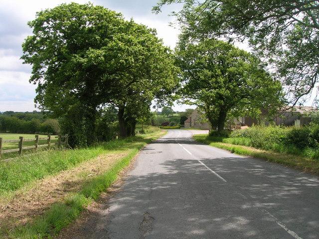 Careless House Lane
