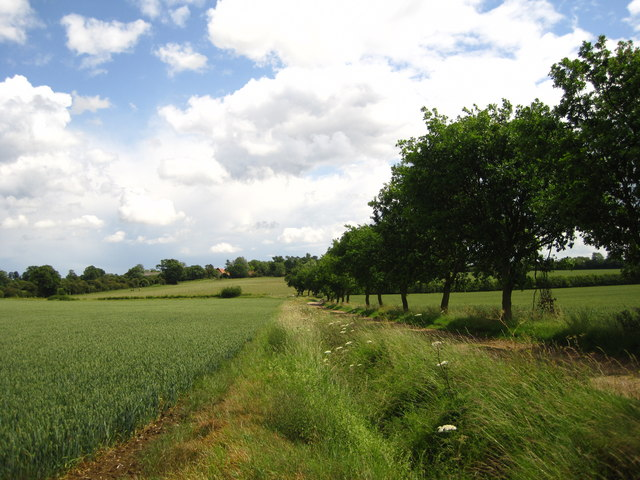 Footpath to Winston Hall and Winston Church