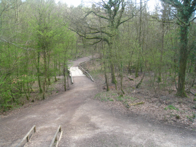 Footpath management - Alice Holt Forest