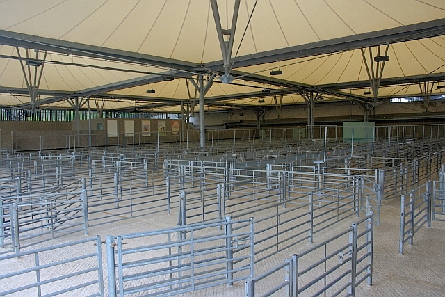 Bakewell Cattle Market