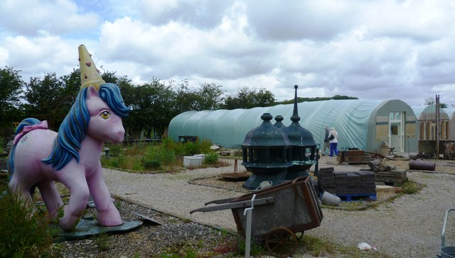 My little pony at willow pool garden anthony parkes for Garden centre pool in wharfedale