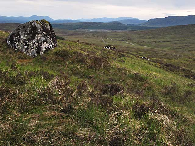 Moorland E of Loch Ericht
