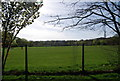 TQ3369 : Playing fields, South Norwood Lake and Grounds by Nigel Chadwick
