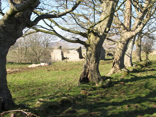 Ruined cottage above the valley of the Mullagh River