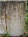 TG0623 : Stone Marker next to Marriott's Way footpath by Adrian Cable