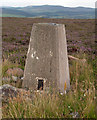 NJ4524 : Heather moorland with trig point on Hill of Towanreef by Trevor Littlewood