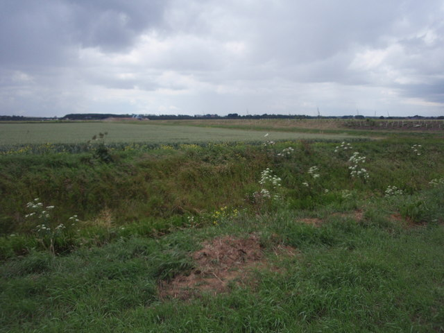 Farmland near Whitepost Road