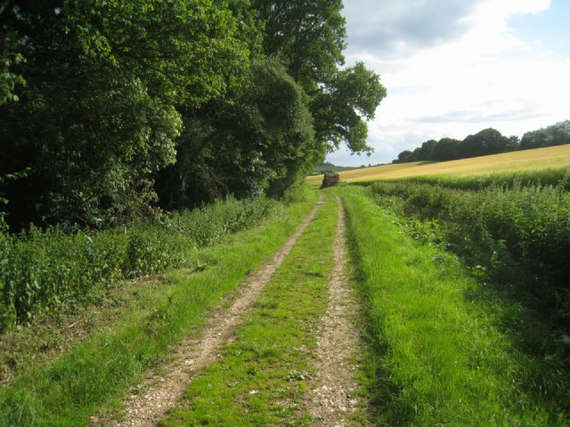 Byway by Warwicks Row Copse