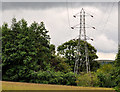 J3067 : Pylon and power lines, Dixon Park, Belfast (4) by Albert Bridge