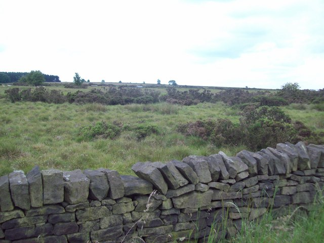 Access Land off Beeley Lane