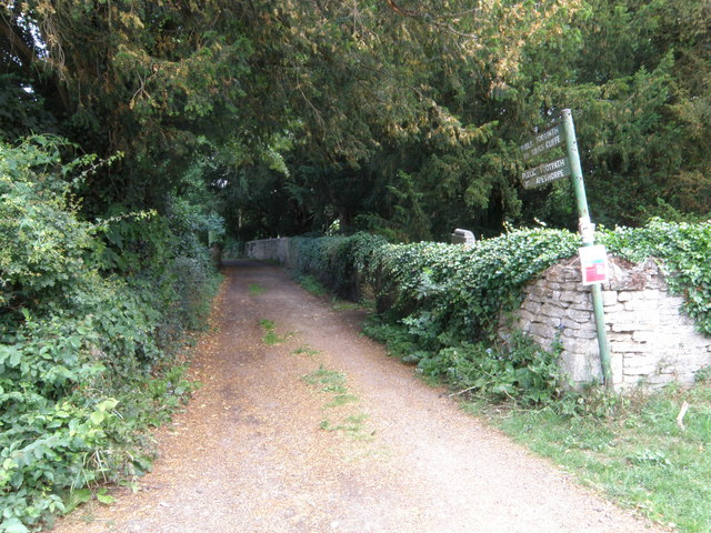 Access track to the woods