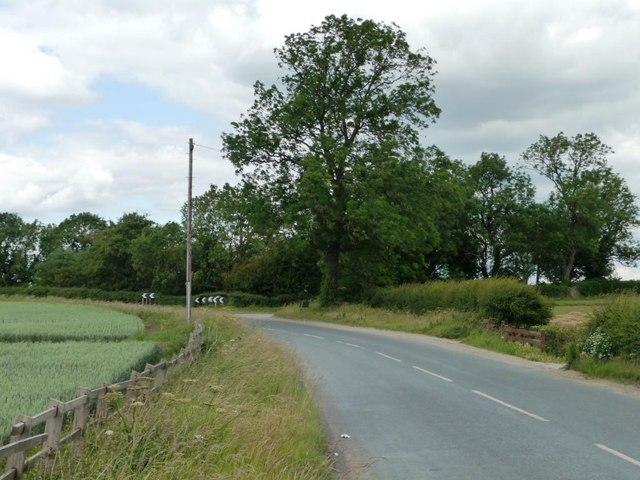 Small wood alongside Womersley Road