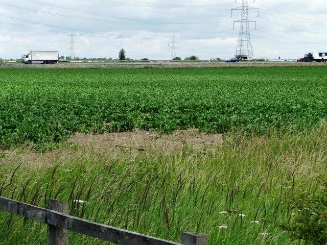 The M62 passing arable farmland