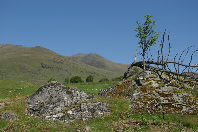 Rock outcrops & trees SE of Kiltyrie