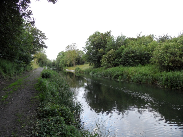 Grand Canal east of Sallins, Co. Kildare