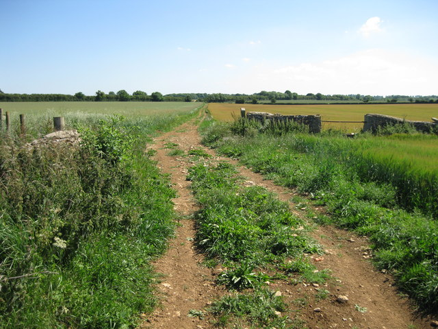 Stonehill Lane - looking south