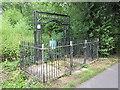 SJ4570 : St Plegmund's Well, Plemstall by Jeff Buck