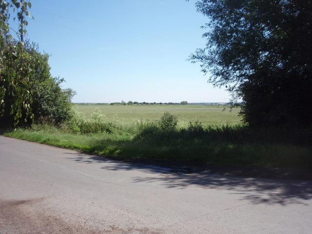 Farmland at River Bank