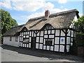 SJ6174 : Poplar Cottage by Sue Adair