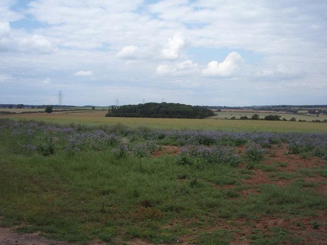 Rolling landscape near Essendine