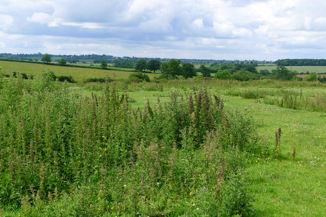 Open fields around Upper Weald, Calverton