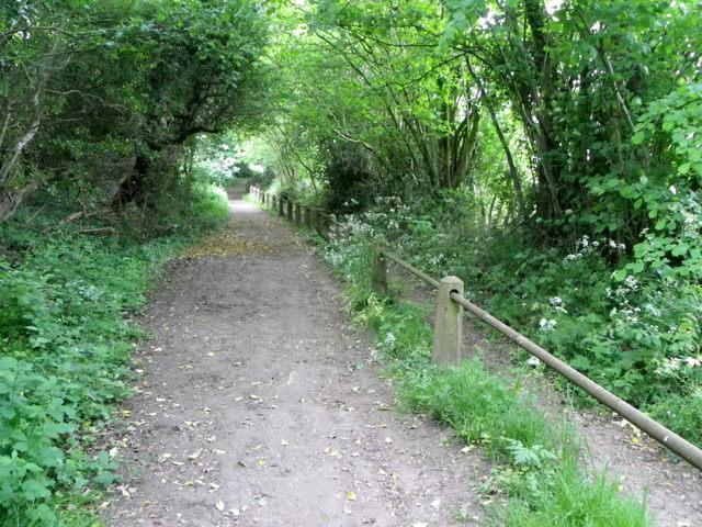 Bridleway, Salehurst