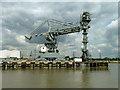 TQ5976 : Coal unloader, West Thurrock power station jetty : Week 26