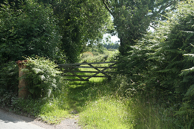 Shaugh Prior: course of tramway