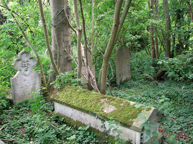 Moss-covered gravestones, Gillingham All Saints