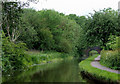 SJ9048 : Caldon Canal south of Milton, Stoke-on-Trent by Roger  Kidd
