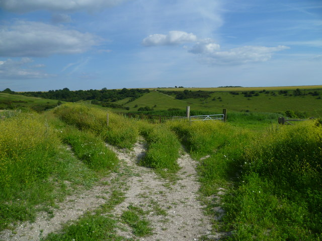 Bridleway south of Downs Farm