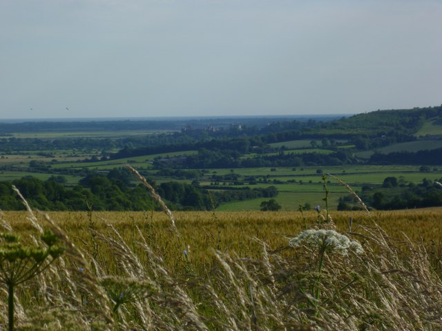 Downland view from byway