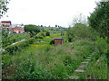 SJ9050 : By the disused railway near Milton, Stoke-on-Trent by Roger  Kidd