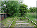 SJ9050 : Disused railway near Milton, Stoke-on-Trent by Roger  Kidd