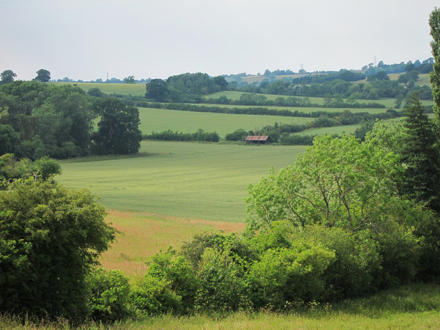 Fields north of Great Brington