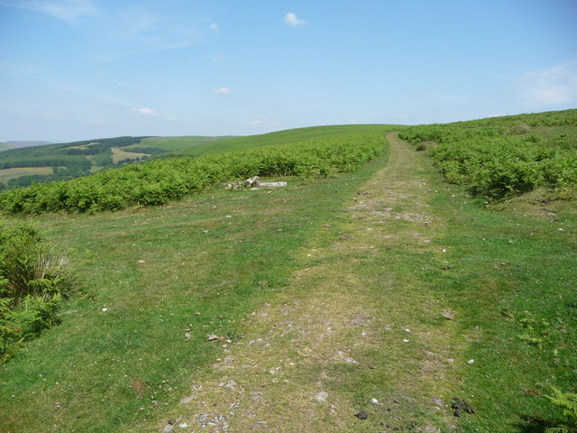 Junction of paths above the Darran Valley