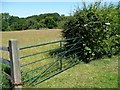 SE2012 : Field gate off Cross Lane by Christine Johnstone